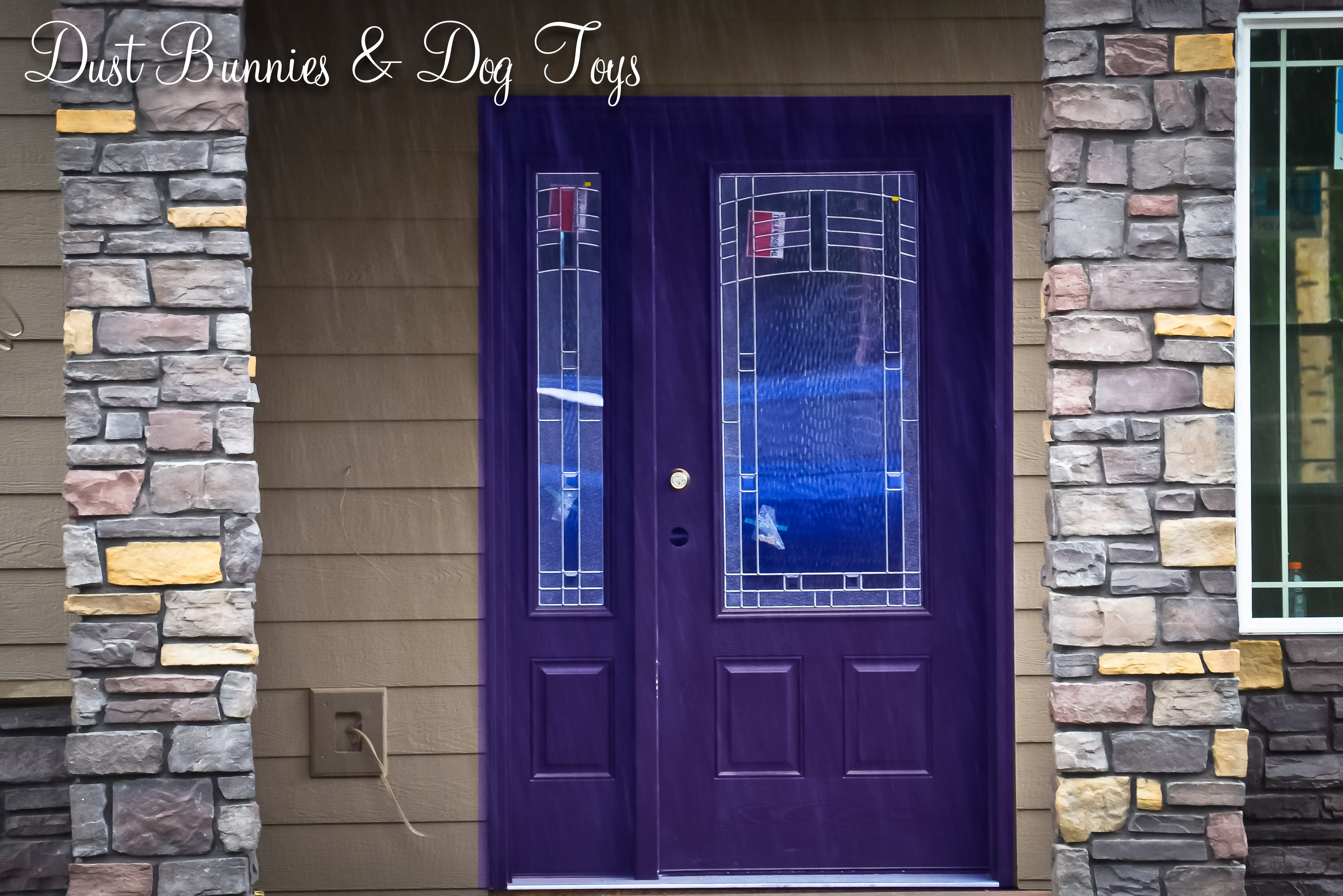 Shut The Front Door Its Purple Dust Bunnies And Dog Toys