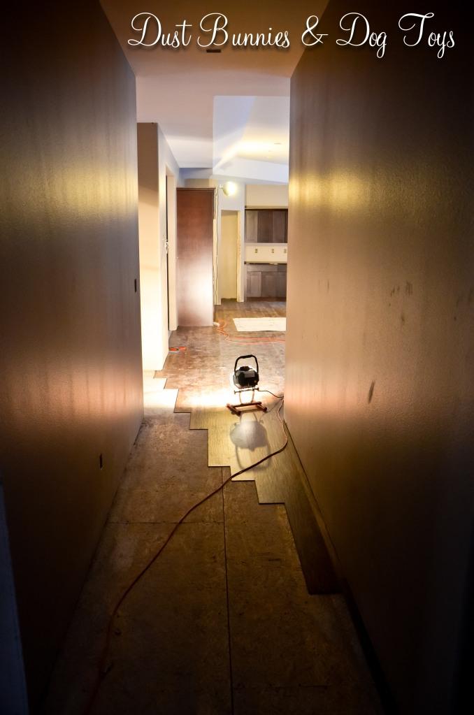 Floor-Hallway