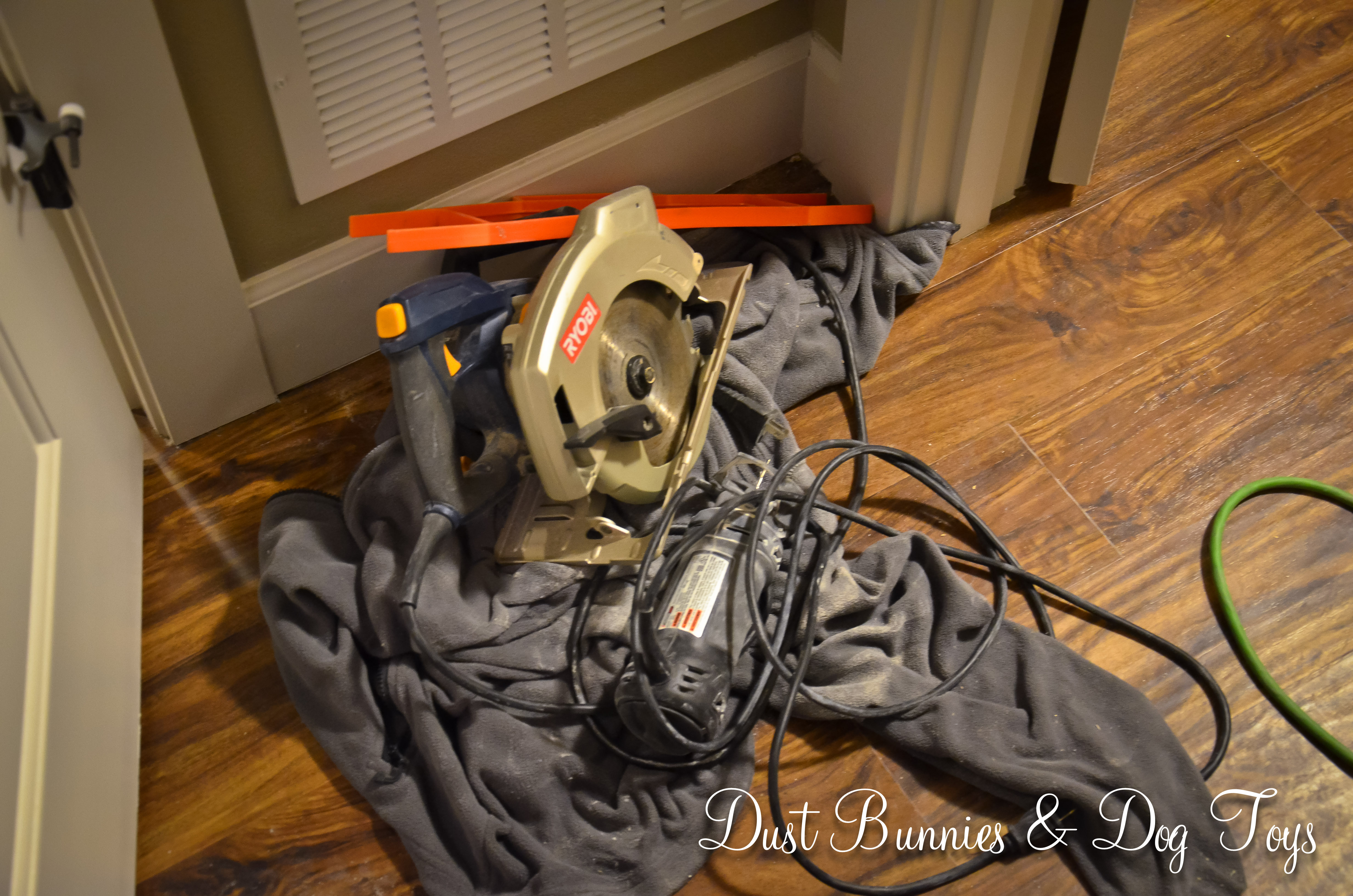 Closet Dust Bunnies And Dog Toys Wiring Equipment Closetsaws