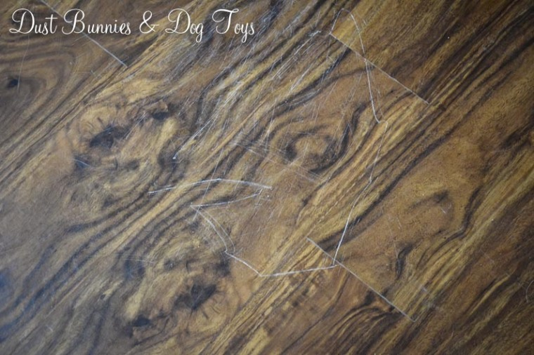 Luxury Vinyl Plank Dust Bunnies And Dog Toys - Is vinyl plank flooring scratch resistant