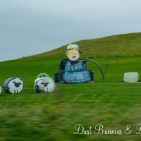Our Scotland Adventure – Day 6 continued
